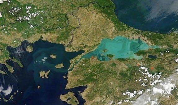 TEMA Vakfı: Kanal İstanbul Projesi'nin Riskleri ve Muhtemel Sonuçları Toplumla Paylaşılmalı class=