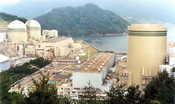Ayvaz Ürünleri Takahama Nükleer Santrali'nde Kullanılacak