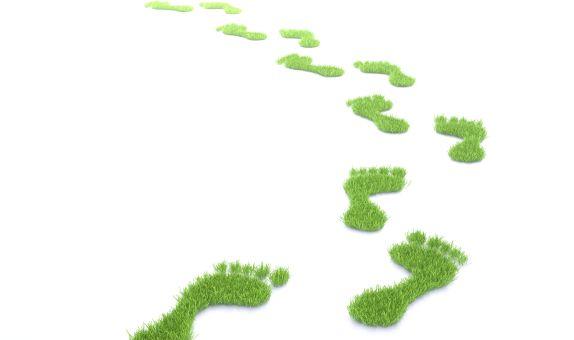 Karbon Ayak İzinin Küçültülmesi için Belediyelerde Alınabilecek Temel Önlemler